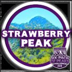 I hiked Strawberry Peak