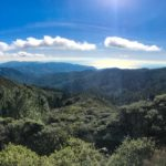 View of the Pacific on our way up Mt Tam